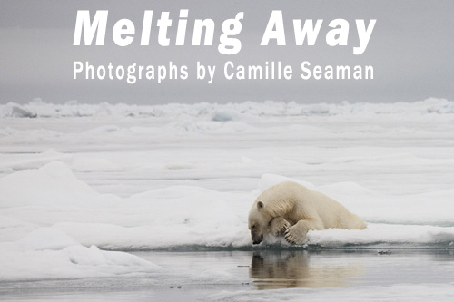 Melting Away: Photographs by Camille Seaman