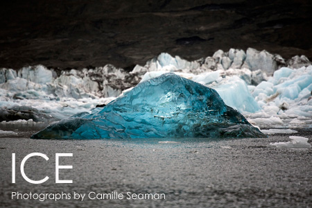 ICE: Photographs by Camille Seaman